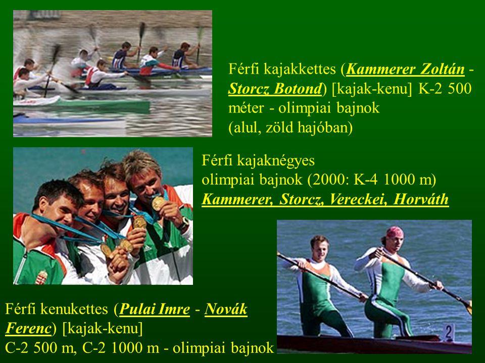 Férfi kajakkettes (Kammerer Zoltán - Storcz Botond) [kajak-kenu] K-2 500 méter - olimpiai bajnok
